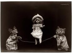 amazing vintage cat's pictures