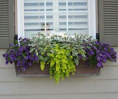 Still time to hang a flower box on the balcony railing......