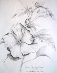 flowers pencil drawings - Buscar con Google
