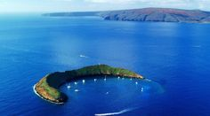 [ Updated ] This image is Molokini. Molokini is a partially sunken volcanic crater just miles off the coast of Maui, Hawaii. Located between the islands of Maui and Kahoolawe, Molokini. Amazing Places On Earth, Places Around The World, Beautiful Places, Beautiful Fish, Beautiful Islands, Dream Vacations, Vacation Spots, Maui Vacation, Vacation Ideas