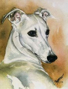 Fawn Whippet Art Print by Yvonne Sovereign