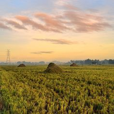 Rural #sunrise in my neck of the woods #Koronadal #southcotabato #Mindanao #itsmorefuninthephilippines #visitphilippines #Sharephilippines #sharePH #skyscannerph #travelnow