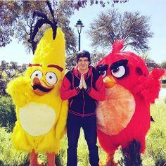 Angry Birds | La Otra Pelicula| con Willy y StaXx :3
