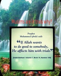 If Allah wants to do good to somebody. He afflicts him with trials. Muslim Quotes, Religious Quotes, Islamic Quotes, Prayer Verses, Quran Verses, Allah Islam, Islam Muslim, Saw Quotes, Photo Grid