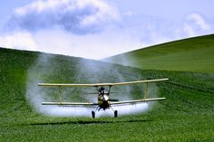 My uncle was a WWII pilot and crop duster.  Remember him flying over our house and learning out of the pit to wave to us.
