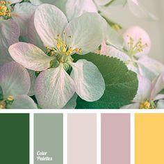 Color Palette  #3809
