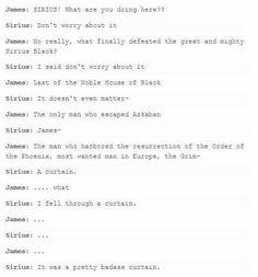 Harry Potter Memes - Only A True Potterhead Can Understand Harry Potter Puns, Harry Potter Marauders, Harry Potter Universal, Harry Potter World, The Marauders, Slytherin, Hogwarts, Sirius Black, No Muggles