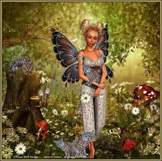 Fairy in The Wood.....