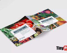 Trifold Google Docs Brochure Templates Free Download, Business Flyer Templates, Brochure Sample, Brochure Design, Browser Chrome, Google Docs, Lettering, Flyer Design, Drawing Letters