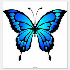 Butterfly Outline, Butterfly Design, Blue Butterfly, Unique Butterfly Tattoos, Butterfly Stencil, Cartoon Butterfly, Butterfly Clip Art, Butterfly Dragon, Butterfly Painting