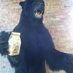 Black polar bear at 3030 Coffee.