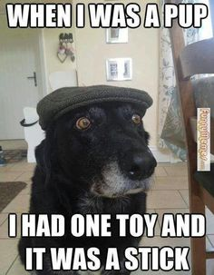 Back in my day - Funny Dogs XYZ