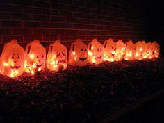 Pumpkin Milk Jugs