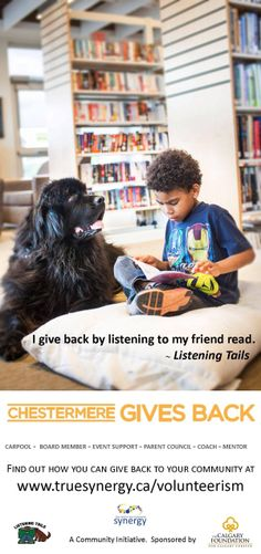 Koda shines as a reading therapy dog (and spokesmodel) for the Chestermere Listening Tails program - www.truesynergy.ca/volunteerism