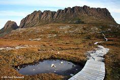 The Overland Trail, my aim 2014