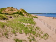 Explore miles of golden sand at Cavendish Beach Cavendish Beach, Endangered Bird Species, Cabot Trail, Lake Huron, Prince Edward Island, Beaches In The World, Sandy Beaches, Beautiful Beaches, Vacation Spots