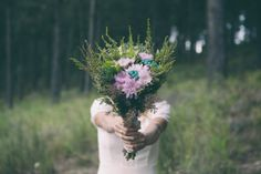 Jess and Marius - Flower Power 2 Wedding Images, Flower Power, Dandelion, Flowers, Plants, Dandelions, Flora, Royal Icing Flowers, Plant