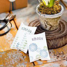 Outdoor Party: Seed Packet Party Favors