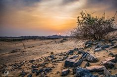 Desert by yt5qq6krbs #Landscapes #Landscapephotography #Nature #Travel #photography #pictureoftheday #photooftheday #photooftheweek #trending #trendingnow #picoftheday #picoftheweek