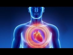 If you want a healthy heart, you have to have healthy blood vessels. But if you&… - Heart Health Leiden, Heart Attack Symptoms, Atrial Fibrillation, Heart Healthy Recipes, Healthy Heart, What Happened To You, Blood Vessels, Heart Vessels, Cholesterol Levels