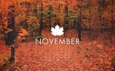 november wallpapers hd free download