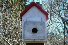 Roost Boxes - What Is a Bird Roosting Box?