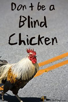 Don't be a blind chicken when it comes to crossing the math road. Use your experiences! MathFour.com