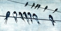 On the Line, Swallows - collagraph print - Kerry Buck Animal Art, Textile Art Embroidery, Vintage Bird Illustration, Art Images, Collagraph, Glass Birds, Lino Print, Bird Illustration, Art Inspiration