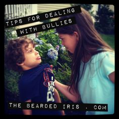 A reformed bully shares tips for dealing with bullies at www.TheBeardedIris.com