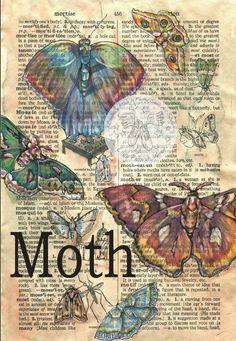 Vintage: Vlinder- Vogel- Bloem *Butterflies - Birds - Flowers ~Kristy Patterson-Flying Shoes Art Studio: op pagina woordenboek; Moth~