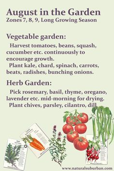 Garden to do list for zones 7 8 and 9