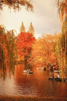 A Beautiful Day in Fall