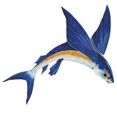 Flying Fish A Porcelain Pool Mosaic by Custom Mosaics, Inc.- Flying Fish A Porcelain Pool Mosaic by Custom Mosaics, Inc. Fish Pool, Swimming Pool Mosaics, Pelican Tattoo, Drawn Fish, Ceramic Fish, Fish Drawings, Fish Crafts, Fish Design, Fish Art