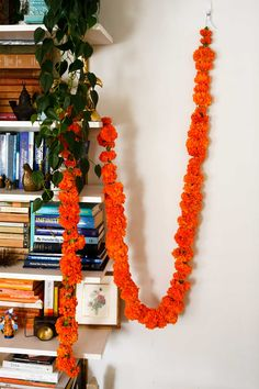 A living flower garland made with marigolds #garland #diyhome #diyproject