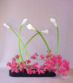 ikebana flowers - Google Search