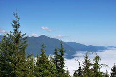 Mount Walker Lookout, Washington