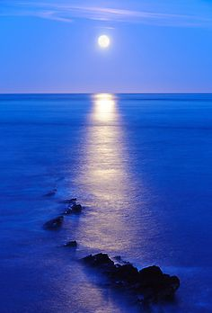 Moonrise over Peveril Point, a promontory on the east facing coast of the isle of Purbeck, in Dorset, England and is part of the town of Swanage (UK)