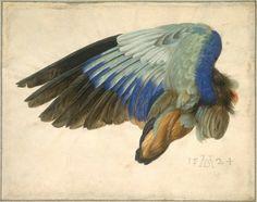 Рисунки из коллекции Яна Вуднера покажут в Вашингтоне