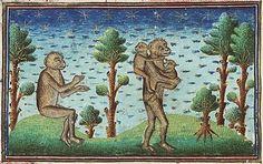 Medieval Bestiary :