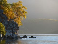 Autumn @ Igor Shpilenok's Wildlife Blog