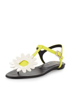 X31LV Roger Vivier Thong Chips Flower Flat Sandal, White/Yellow