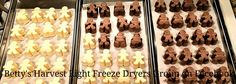 Betty's Harvest Right Freeze Dryers Group has members. A group dedicated to helping others have a positive freeze drying experience at home. Harvest Right Freeze Dryer, Canned Food Storage, Frozen Water, Freeze Drying Food, Jar Gifts, Preserving Food, Canning Recipes, Free Food, Pudding