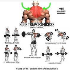 Huge Traps Workout step by step tutorial Huge Traps Workout step by step tutorial Fitness Workouts, Weight Training Workouts, Fitness Tips, Lifting Workouts, Gym Fitness, Health Fitness, Step Workout, Gym Workout Tips, Workout Motivation