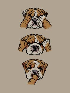 Noevil English Bulldog Art Print                                                                                                                                                                                 Más