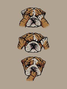 Noevil English Bulldog Art Print                                                                                                                                                                                 Más