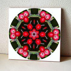 Red berries mandala ceramic tile nature photo trivet Autumn