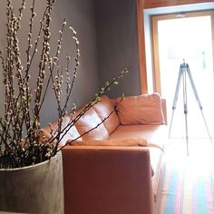 #frühling #zahnarztpraxiswien #dentailor #drszabo #zahnbehandlungwien #zahnmedizin #radetzkyplatz #wien Sofa, Couch, Furniture, Home Decor, Local Dentist Office, Dentistry, Settee, Settee, Decoration Home