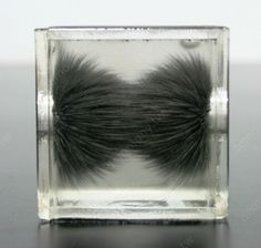 The 3-dimensional magnetic lines.