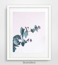 Unique wall art, eucalyptus plant, modern wall art, cool posters, garden art, affiche scandinave, living room art, wall picture, bedroom art by Ikonolexi on Etsy