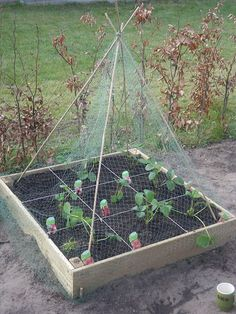 Make your own vegetable garden to grow vegetables? Make a vegetable garden container yourself. Discover more about square foot gardening, known as square meter gardening. Container Gardening, Gardening Tips, Simple Garden Designs, Garden Beds, Garden Paths, Farmhouse Garden, Square Foot Gardening, Edible Garden, Growing Vegetables